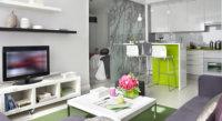 Фото квартиры студии свободной планировки с несколькими зонами