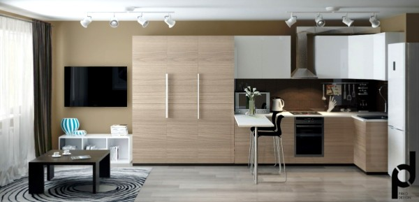 В центре внимания обычно находятся гостиная вместе с кухонной зоной, которые примыкают друг к другу.