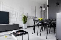 Черное, белое дизайн студии квартиры – оригинальные темы и классические варианты.